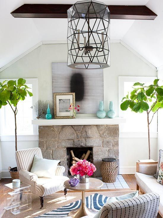 how to care for a fiddle leaf fig tree 3