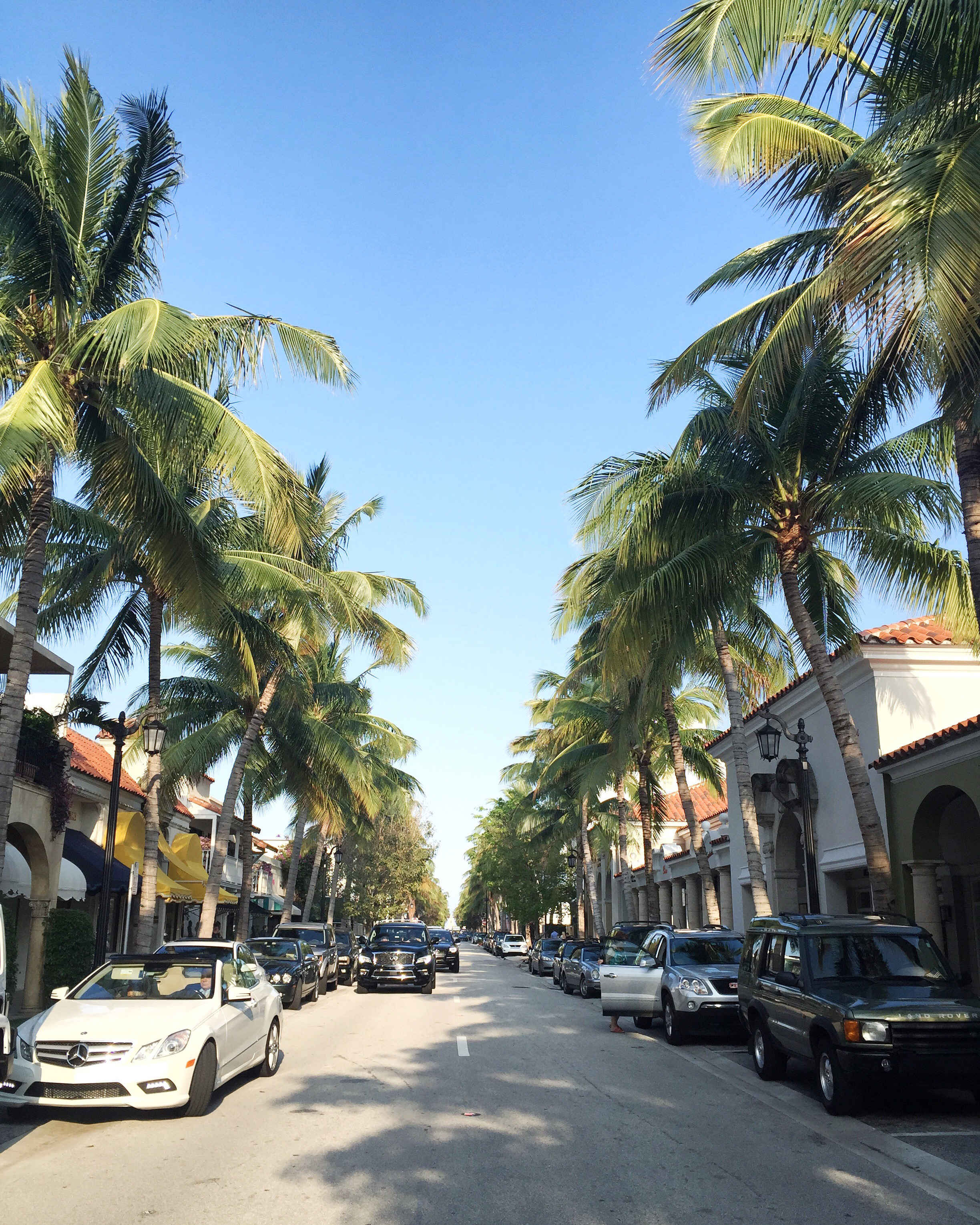 What To Do In West Palm Beach 9