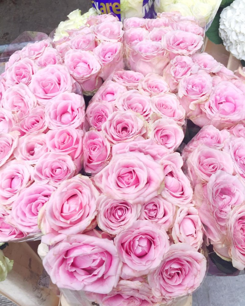 Finally feels like spring - thank goodness!!! ☀Off to Cleveland for the holiday weekend. Hope everyone has a great Easter and happy Friday!! #tgif #pink #roses #friyay