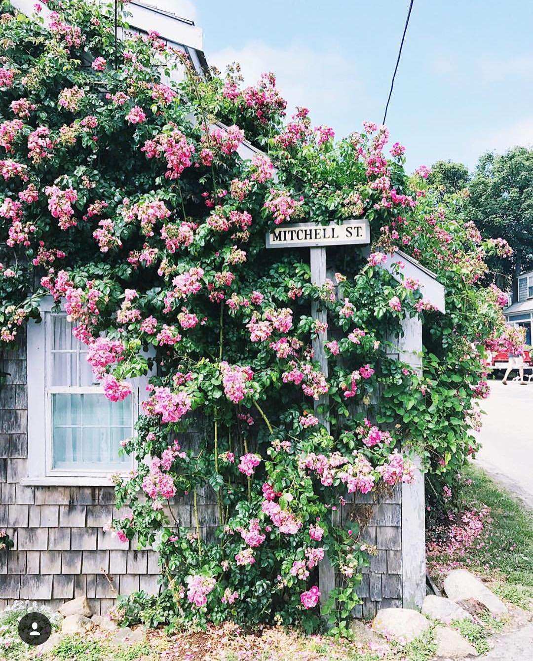 Dreaming of Nantucket Cant wait to return Labor Day weekend!!hellip